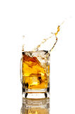 Beer splashing on a white reflective background Royalty Free Stock Images