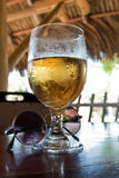 Beer and Sunglasses Royalty Free Stock Image