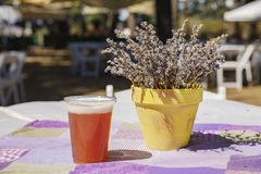 Lavender Festival at 123 Farm. Beer on table of Lavender Festival of 123 Farm at San Bernardino, Los Angeles County, United States Stock Photos