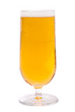 Beer. In a tall glass Stock Image