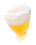 Beer on tall glass Stock Image