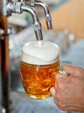 Beer on tap Stock Image