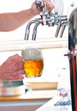 Beer on tap Royalty Free Stock Photo