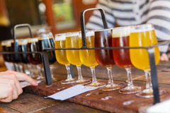 Beer tasting Stock Photos