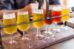 Beer tasting. Tasting of many different types of beers Royalty Free Stock Photography