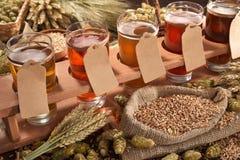 Beer testing Stock Image