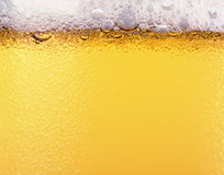 Beer texture. Beer and beer foam. Texture Royalty Free Stock Photography