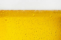 Beer texture. Droplets on freshly poured beer Royalty Free Stock Image