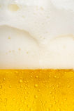Beer texture Royalty Free Stock Image