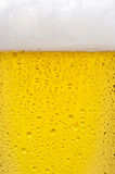 Beer texture Royalty Free Stock Photos