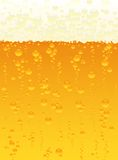 Beer texture Stock Images