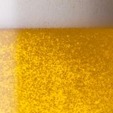 Beer Texture. A pouring beer with oxygen bubbels and froth. ideal for websites and magazines layouts Stock Images