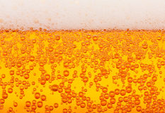 Beer texture, seamless Royalty Free Stock Images