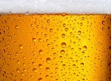 Free Beer Textured Background Stock Photos - 118794463