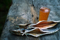 Beer in a thick glass Soviet tumbler and two salty fishes of a pike Stock Photos