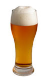 Beer tube. Glass of refreshing and cold beer with undulating forms golden trimmed and isolated Stock Photography
