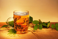 Beer wheat and hop Royalty Free Stock Image