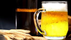 Cold beer with wheat. Beer with wheat on table stock video