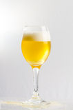 Beer in a wine glass. Beer and bubble in a wine glass Royalty Free Stock Photos