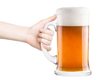 Beer with woman hand making toast. Isolated on a white background Royalty Free Stock Photos