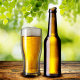 Beer on Wood Table Stock Image