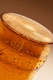 Beer4 Foto de Stock Royalty Free