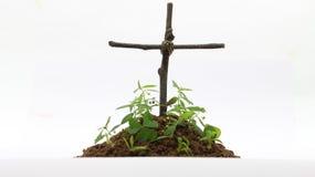 Beerdigung mit Kreuz im weißen Hintergrund lizenzfreie stockfotografie
