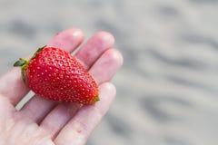 Beere einer saftigen reifen frischen Erdbeere liegt auf einer Hand im Sommer auf einem sandigen Hintergrund Lizenzfreies Stockbild