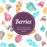 Beere, Erdbeere, Brombeere, Korinthe, Himbeere, Hand gezeichnetes nahtloses Vektormuster Organische Illustration der Natur Stockbild