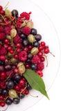 Beeren auf einer Platte Lizenzfreies Stockbild