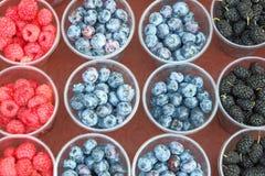 Beeren in den Plastikschalen an der angemessenen Sommergesundheit lizenzfreie stockbilder