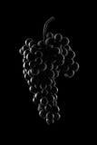 Beeren der dunklen Weintraube mit Wasser fällt in Restlicht-ISO Lizenzfreies Stockfoto