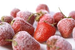 Beeren der Erdbeere Stockfotos