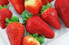 Beeren der Erdbeere in der Plastikverpackung Stockfotografie