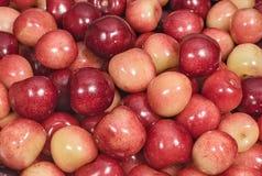 Beeren des süße Kirschhintergrundes Stockbilder