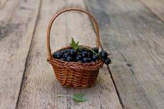 Beeren in einem Korb Stockfotografie