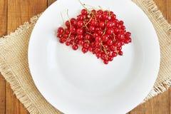 Beeren einer roten Johannisbeere auf der weißen Platte Lizenzfreies Stockbild