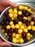Beeren einer süßen Kirsche unter Wasserstrahl Stockfotos