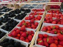 Beeren für Verkauf Lizenzfreies Stockbild