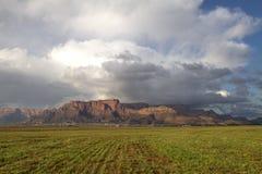 Beeren-Hügel bewirtschaftet 1 Lizenzfreie Stockfotos
