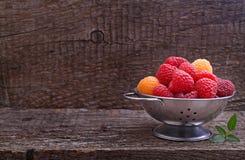 Beeren rot und gelbe Himbeeren stockfotografie