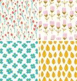 Beeren- und Blumenmuster Stockbild