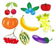 Beeren und Früchte Lizenzfreie Stockfotos