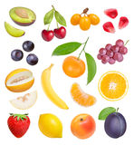 Beeren und Früchte Stockbild