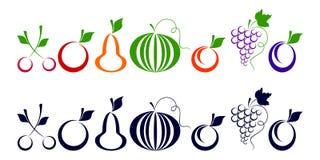Beeren und Früchte. Stockfotografie