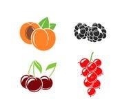 Beeren und Frucht auf weißem Hintergrund lizenzfreie abbildung
