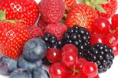 Beeren und rote Johannisbeeren. lizenzfreies stockfoto