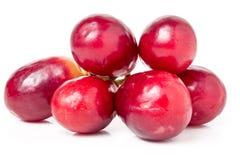 Beerenbündel der roten Traube lokalisiert auf weißem Hintergrundausschnitt Stockfotos