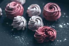 Beereneibische Rosa und Weiß Lizenzfreie Stockfotografie