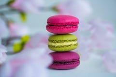 Beerenfrühlingsfarbmakronen-Lebensmittelhintergrund Stockbilder